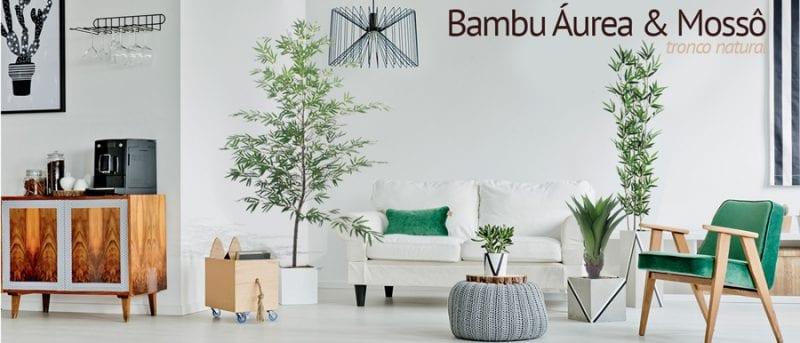adobe bambu