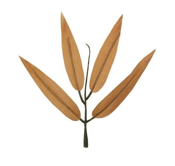 Folha de Bambu Artificial (pacote com 50 folhas) - Ocre