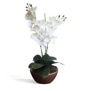 Arranjo de Orquídea Branca (80cm)