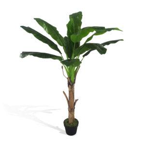 Bananeira em Pote 12F (1,60m)