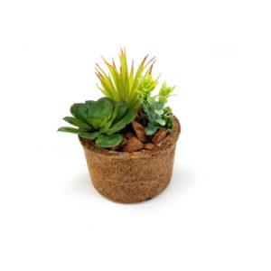 foto de vaso com suculentas artificial em vaso fibra coco