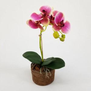 foto do Arranjo Floral Artificial de Orquídea Borboleta Rosa (40cm) em vaso fibra coco